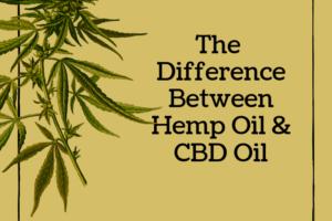 Cannabis Oil
